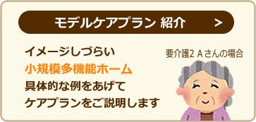 モデルケアプラン紹介