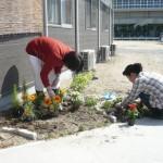 4月22日花植えs